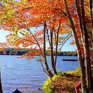 Autumn lake, Connecticut by Alberto  DeJesus