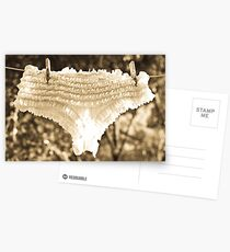 Frilly Knickers Postcards