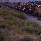 Jammin to the sound of the rails by Lorin Richter