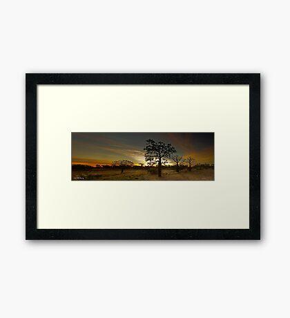 Kimberley Boabs Framed Print