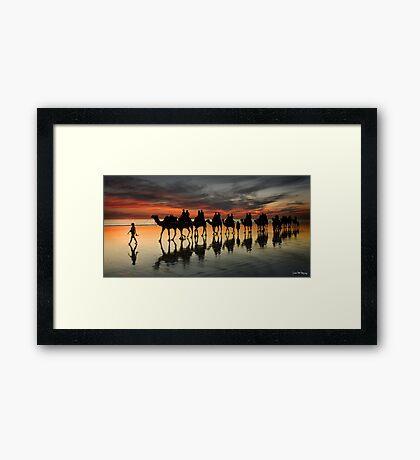 Cable Beach Camel Train Framed Print