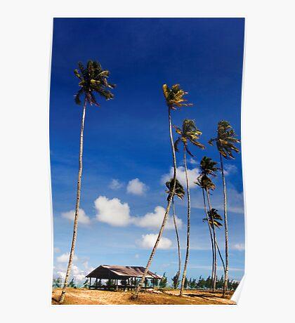 Sunny Blue Sky Poster