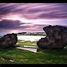 Green Rocks by JayDaley