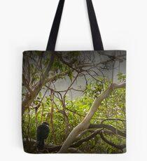 Tasmanian Currawongs Tote Bag