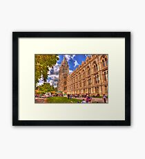 Natural History Museum Framed Print
