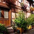 Eguisheim The Beautiful 5 by Jacinthe Brault