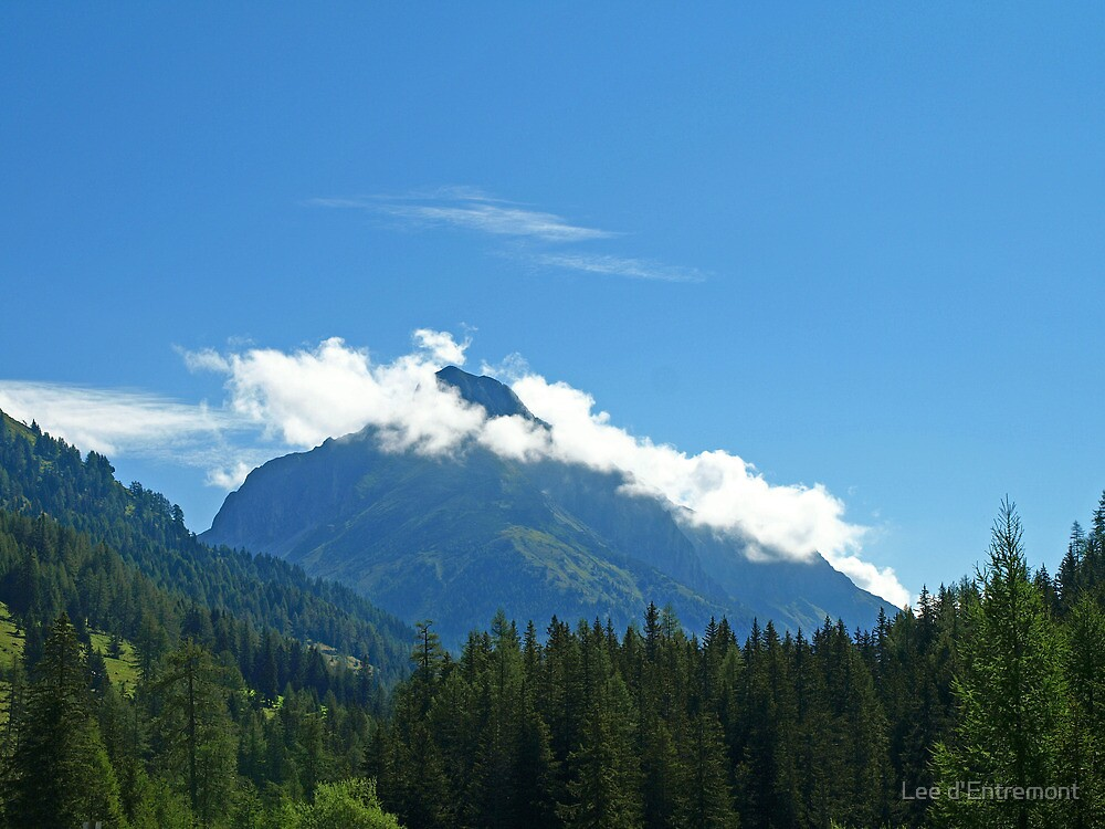 The Mountain in the sky. by Lee d'Entremont