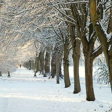 Winter Wonderland in Maynooth, Ireland. by orlaphoto