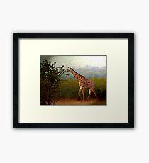 Tallness Framed Print