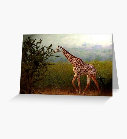 Tallness Greeting Card