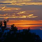 Fiery Sky at Baltz Lake by Susan Blevins