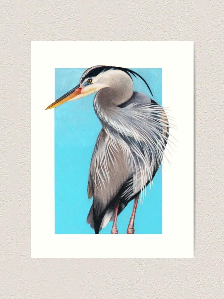 Alternate view of Great Blue Heron art by Wildlife Artist Sherrie Spencer Art Print
