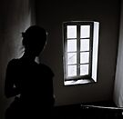 Staircase Window by Mojca Savicki