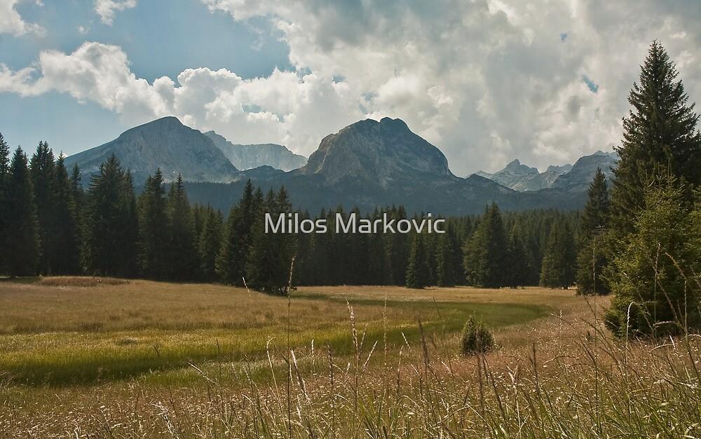 Landscape by Milos Markovic