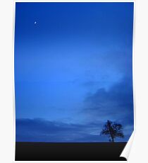 Lone Tree and Moon Poster