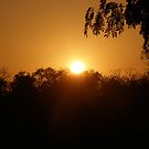 Sunrise In Senegal by Vulcha