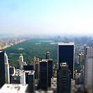 Central Park in New York by dgscotland