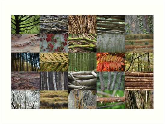 woven plants 5x5 art prints by cuilcreations redbubble