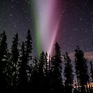 Auroras Night by peaceofthenorth