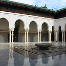 The Great Mosque of Paris by Elena Skvortsova