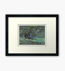 Glade Framed Print