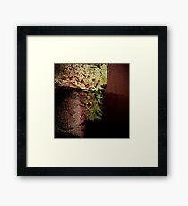 Urbex 4 Framed Print