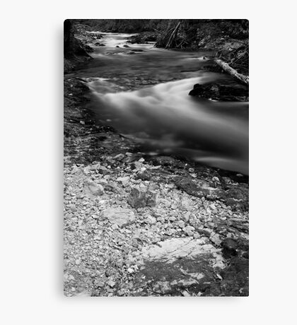 The Soteska Vintgar gorge at dusk in Black and White Canvas Print