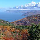 Cape Breton Island, McKenzie Mountain by Jann Ashworth
