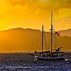 Into the Golden Hour by Richard Earl