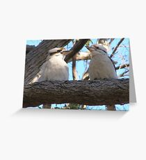 'HERE'S ANOTHER ONE WITH A CAMERA!' Kookaburras. Greeting Card