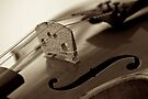 Violin in Sepia by Extraordinary Light