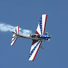Aerobatic Airplane by Karl R. Martin
