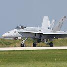 F/A-18 by Karl R. Martin