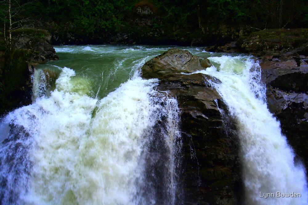 """""""Brink of the Falls"""" by Lynn Bawden"""