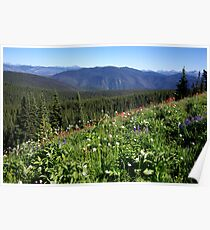 Heather Trail - Alpine Meadows Poster