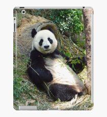 Panda iPad-Hülle & Klebefolie