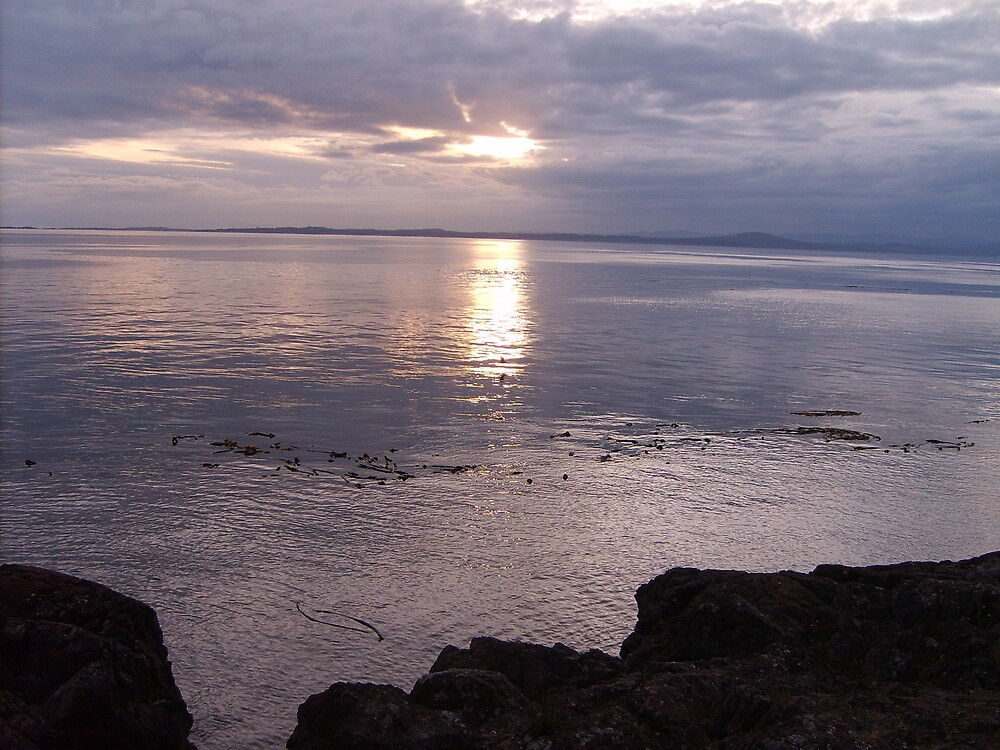 Muted Sunset at Lime Kiln Park 2 by Terri Clark