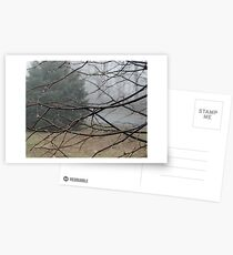 Fog Hangs Heavy Postcards