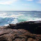 Landscape Photography - Acadia 11 by Samantha Haney Press