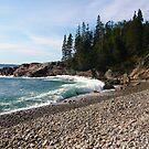 Landscape Photography - Acadia 13 by Samantha Haney Press