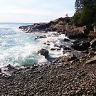 Landscape Photography - Acadia 14 by Samantha Haney Press