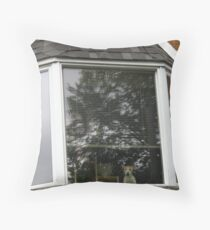 Heh You, PRIVATE PROPERTY! Throw Pillow