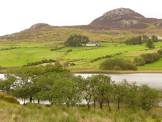 A View Of Rural Peace In Ireland by Fara