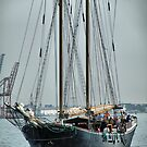 Sailing by joan warburton