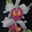 Orchid #2  by HDPotwin