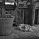 BERIDA WOOL SHED B&W by Helen Akerstrom Photography