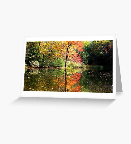 Serenity Cove Greeting Card