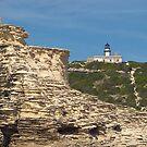 Pertusato's Lighthouse from the sea by Alessandra Antonini