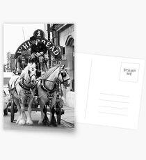 Whitbread Horses Postcards