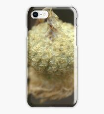 Crown Jewels iPhone Case/Skin